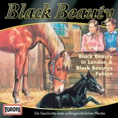 03/Black Beauty in London/Black Beautys Fohlen