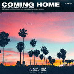 Coming Home - TooManyLeftHands, NIGHT / MOVES