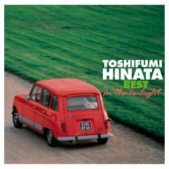 ORGANIC STYLE Toshifumi Hinata The Best - In the Twilight - Toshifumi Hinata