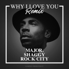 Why I Love You (Remix)