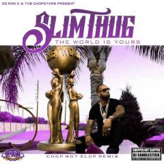 The World is Yours (Chopnotslop Remix) - Slim Thug, OG Ron C, DJ Candlestick
