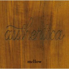 BARFOUT! presents authentica - mellow - Various Artists