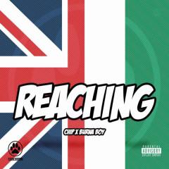 Reaching - Chip