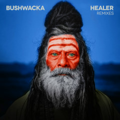 Healer (Remixes) - Bushwacka!