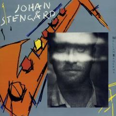 Mellan raderna - Johan Stengård
