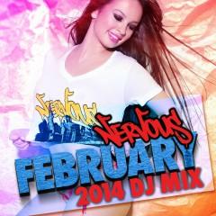 Nervous February 2014 - DJ Mix - Various Artists