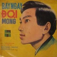 Bảy Ngày Đợi Mong (Tân Cổ) - Hương Lan, Minh Phụng