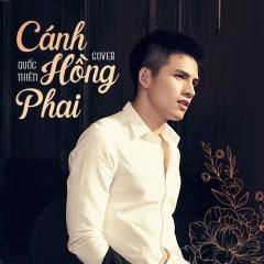 Cánh Hồng Phai (Cover) (Single)