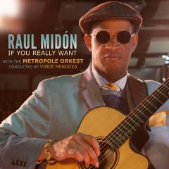 If You Really Want - Raul Midon, Metropole Orkest