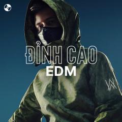 Đỉnh Cao EDM - Avicii, Calvin Harris, Alan Walker, The Chainsmokers