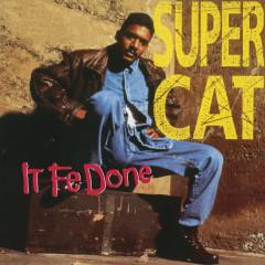 It Fe Done - Super Cat