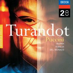 Puccini: Turandot - Inge Borkh, Renata Tebaldi, Mario Del Monaco, Coro dell'Accademia Nazionale Di Santa Cecilia, Orchestra dell'Accademia Nazionale di Santa Cecilia