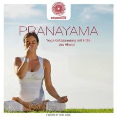 entspanntSEIN - Pranayama (Yoga-Entspannung mit Hilfe des Atems) - Davy Jones