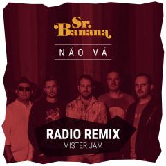 Não Vá (Radio Remix)