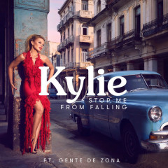 Stop Me From Falling (Single)