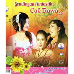 Cak Bowo CS: Ngidam Pentol - Various Artists