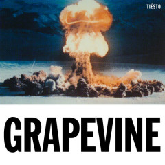 Grapevine (Single) - Tiësto