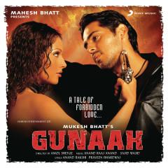 Gunaah (Original Motion Picture Soundtrack) - Anand Raaj Anand, Sajid Wajid