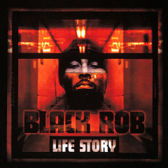 Life Story - Black Rob