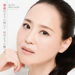 Baranoyounisaite Sakuranoyounichitte - Seiko Matsuda