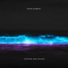 Flotsam And Jetsam - Peter Gabriel