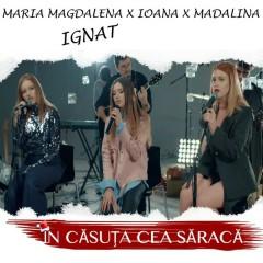 In Casuta Cea Saraca (Single)