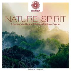 entspanntSEIN - Nature Spirit (A Journey Into Magical & Relaxing Rainforest Sounds) - Jens Buchert