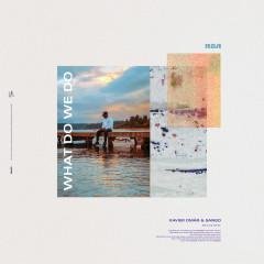 What Do We Do? - Xavier Omär, Sango, Parisalexa