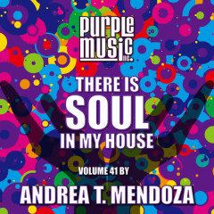 Andrea T. Mendoza Presents There is Soul in My House, Vol. 41 - Various Artists