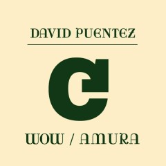 Wow / Amura - David Puentez