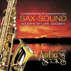 Goodbye My Love, Goodbye - Orchester Ambros Seelos