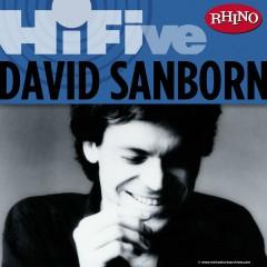 Rhino Hi-Five: David Sanborn - David Sanborn