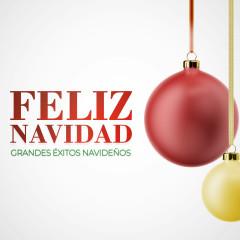 Feliz Navidad: Grandes Exitos Navidenõs - Various Artists
