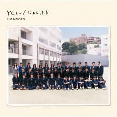 YELL/JOYFUL - IKIMONOGAKARI