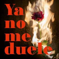 Ya No Me Duele - Gemeliers
