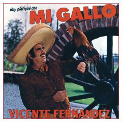 Hoy Platique Con Mi Gallo - Vicente Fernández
