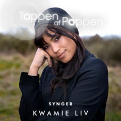 Toppen Af Poppen Synger Kwamie Liv - Various Artists