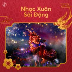 Nhạc Xuân Sôi Động - Various Artists