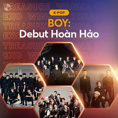 BOY: Debut Hoàn Hảo - Various Artists