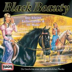 04/Black Beauty im Moor