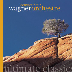 Wagner - Oeuvres Orchestrales - Various Artists