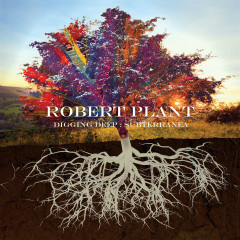 Digging Deep: Subterranea - Robert Plant
