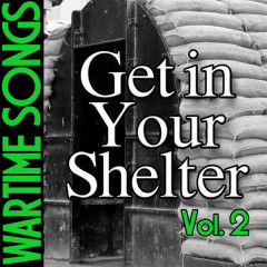 Wartime Songs Vol. 2: Get in Your Shelter - Various Artists