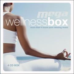 Mega Wellness Box - Various Artists
