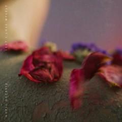 Lest I Lose Myself (Single) - Gurli Octavia