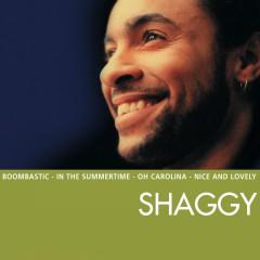 Essential - Shaggy