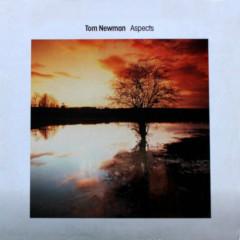 Aspects - Tom Newman