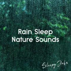 Rain Sleep & Nature Sounds - Sleepy John
