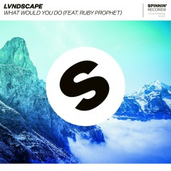 What Would You Do (feat. Ruby Prophet) - LVNDSCAPE, Ruby Prophet