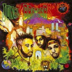 Done By The Forces Of Nature - Jungle Brothers